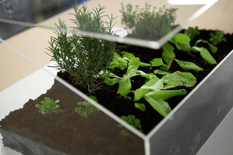 Mini serre de jardin polycarbonate